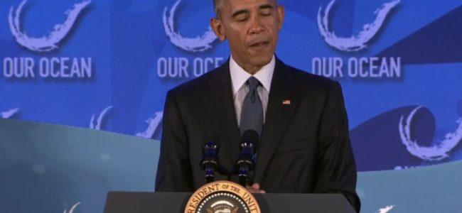 Обама създаде първия национален морски резерват в Атлантическия океан