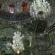 Джамия в Иран спира дъха на посетителите
