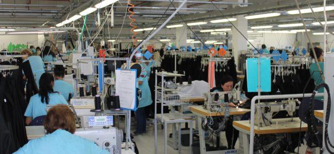 Сивата икономика в България е под 16%