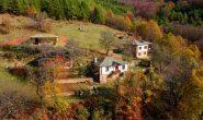 Българка архитект заряза Франция, за да реставрира къщи в Родопите